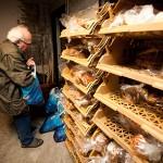 Poels bij het brood